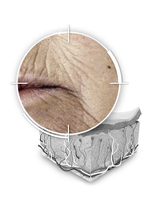 Contorno Occhi e Labbra